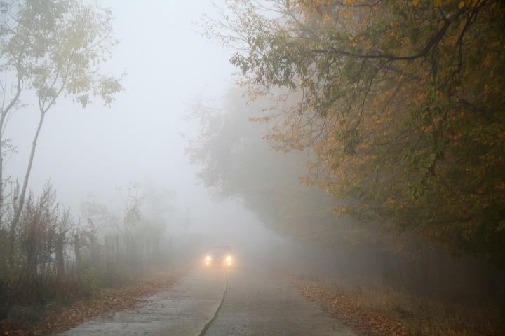 Niebla Diurna